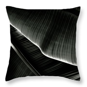 Throw Pillow featuring the photograph Abstract Banana Leaf by Yurix Sardinelly