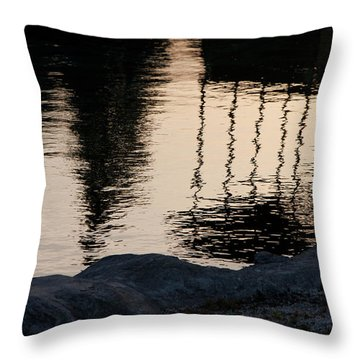 Abstract Color 2 Throw Pillow