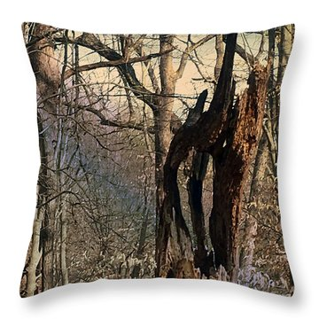 Throw Pillow featuring the photograph Abstract Dead Tree by Robert G Kernodle