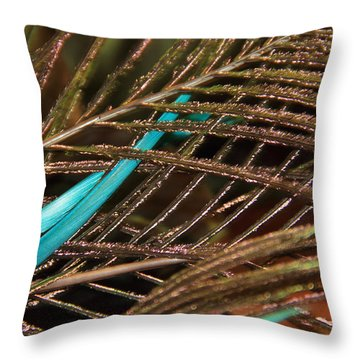 Abstract Feather  Throw Pillow