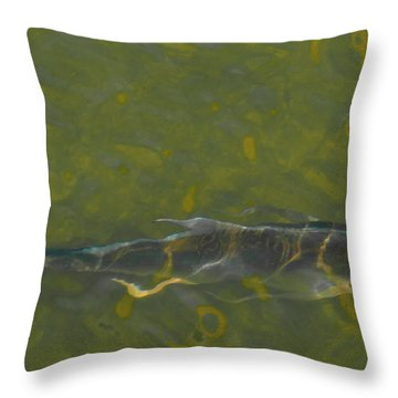 Abstract Fish 2 Throw Pillow by Carolyn Dalessandro
