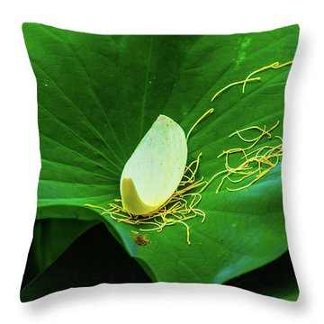 Throw Pillow featuring the photograph Abstract Leaves Of Green And Yellow by Dennis Dame