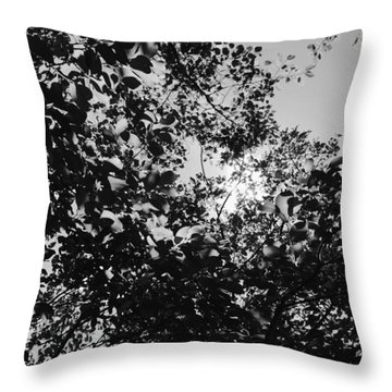 Throw Pillow featuring the photograph Abstract Leaves Sun Sky by Chriss Pagani