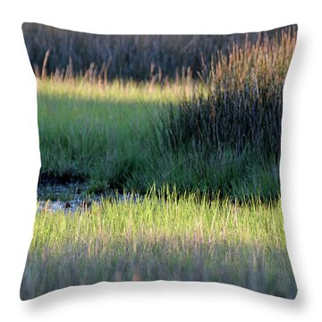 Throw Pillow featuring the photograph Abstract Marsh Grasses by Bruce Gourley