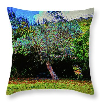 Abstract Nature 68 Throw Pillow