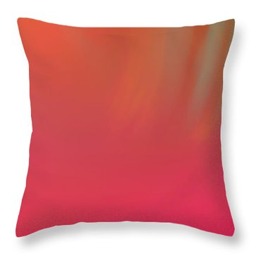 Abstract No. 16 Throw Pillow