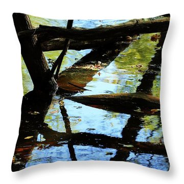 Abstract Of St Croix River 03 Throw Pillow