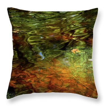 Abstract Of St Croix River 04 Throw Pillow
