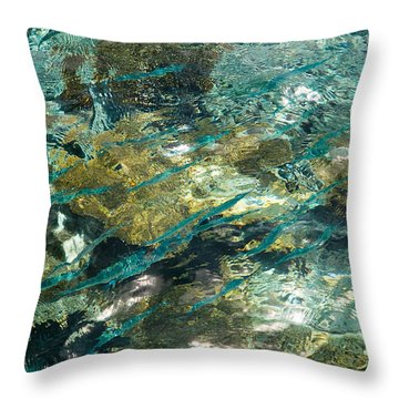 Abstract Of The Underwater World. Production By Nature Throw Pillow by Jenny Rainbow
