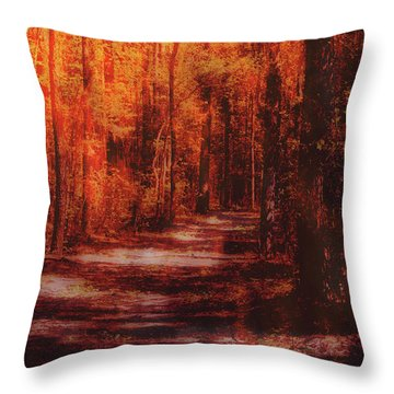 Abstract Path Throw Pillow
