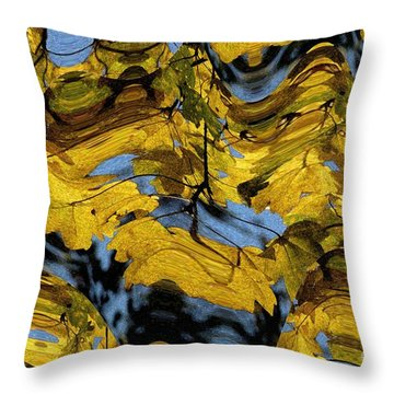 Abstract Pattern 4 Throw Pillow by Jean Bernard Roussilhe