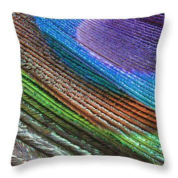 Abstract Peacock Feather Throw Pillow