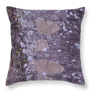 Abstract Photo 001 A Throw Pillow