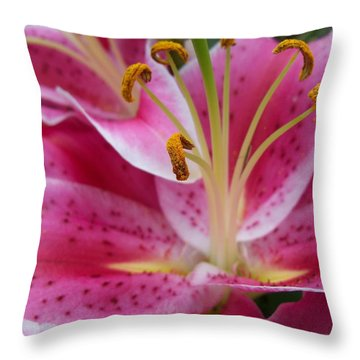 Abstract Pink Lily1 Throw Pillow