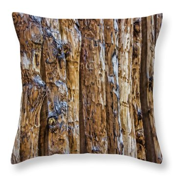 Abstract Posts Throw Pillow