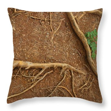 Abstract Roots Throw Pillow by Mary Mikawoz