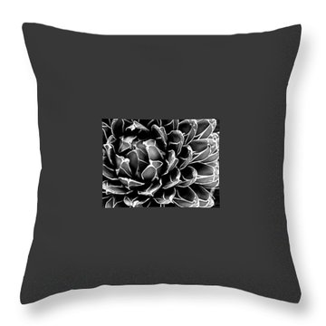 Abstract Succulent Throw Pillow
