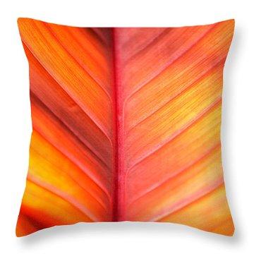 Abstract Throw Pillow by Tony Cordoza
