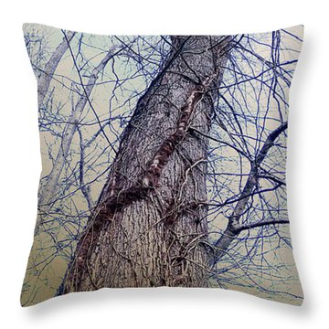 Throw Pillow featuring the photograph Abstract Tree Trunk by Robert G Kernodle