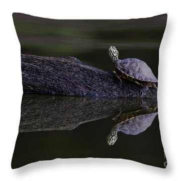 Throw Pillow featuring the photograph Abstract Turtle by Douglas Stucky