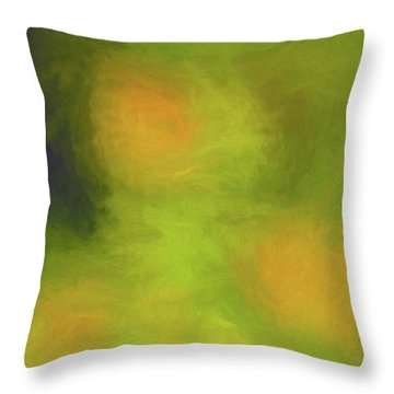 Abstract Untitled Throw Pillow