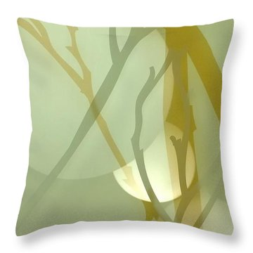 Illusions 1 Throw Pillow