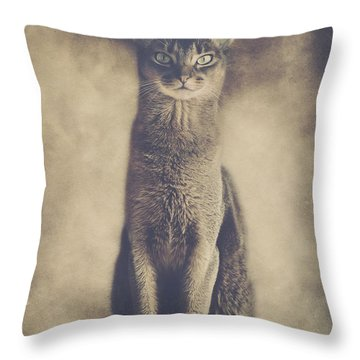 Abyssinian Cat Portrait 2 Throw Pillow