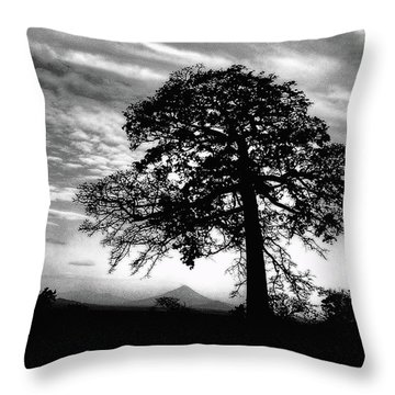 Acacia And Volcano Silhouetted Throw Pillow