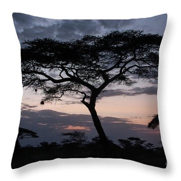 Acacia Trees Sunset Throw Pillow