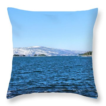Acadia  Throw Pillow by Debbie Stahre