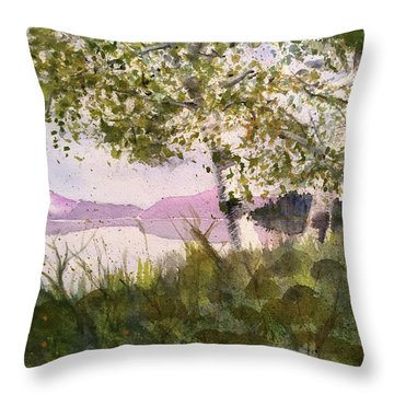 Acadia Morning Throw Pillow by Maura Satchell