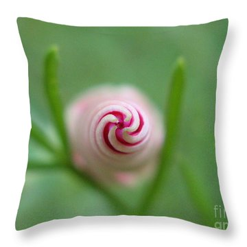 Accelerating Acceptance Photography Throw Pillow