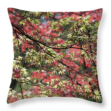 Acer Leaves In Spring Throw Pillow