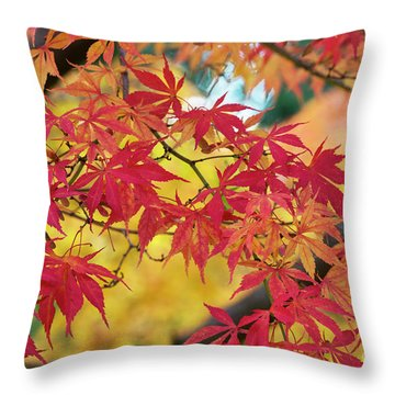 Throw Pillow featuring the photograph Autumn Fire by Tim Gainey