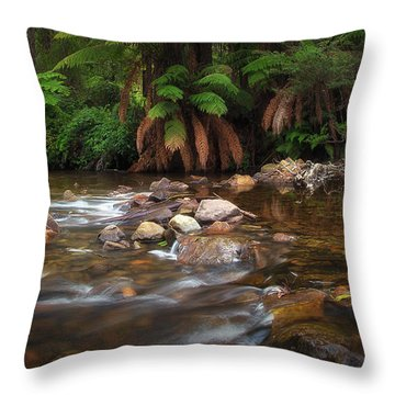 Acheron River Throw Pillow
