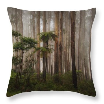 Acheron Way Throw Pillow