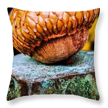 Throw Pillow featuring the photograph Acorn by Bruce Carpenter
