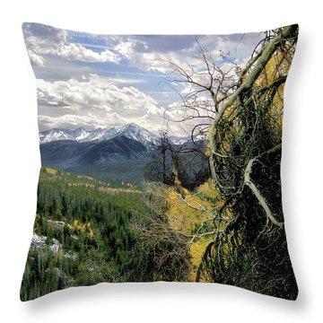 Acorn Creek Trail Throw Pillow