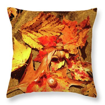 Throw Pillow featuring the photograph Acorns Fall Maple Leaf by Meta Gatschenberger