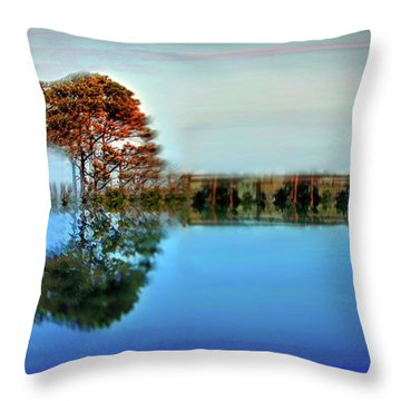 Acoustic Guitar At Gordon's Pond Throw Pillow