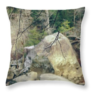 Across From Eagle Falls Throw Pillow
