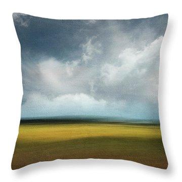 Across The Marsh Throw Pillow