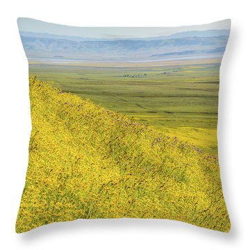 Throw Pillow featuring the photograph Across The Plain by Marc Crumpler