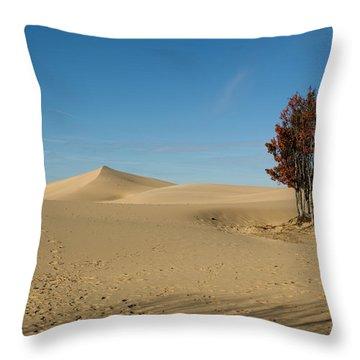 Throw Pillow featuring the photograph Across The Sand 2 by Tara Lynn