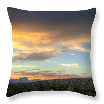 Across The Street Throw Pillow