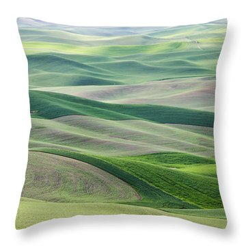 Across The Valley Throw Pillow