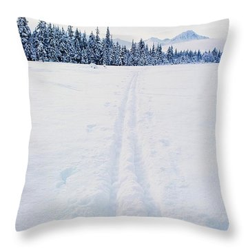 Across The Winter Landscape Throw Pillow by Ronnie Glover
