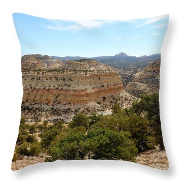 Throw Pillow featuring the photograph Across Utah  by Christy Pooschke