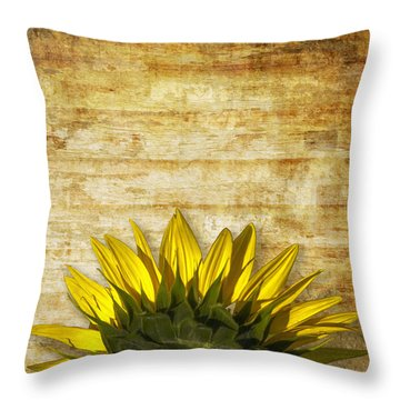 Throw Pillow featuring the photograph Ad Orientem by Melinda Ledsome