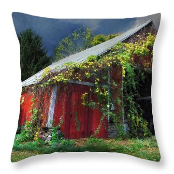 Adams County Winery Throw Pillow by Lori Deiter